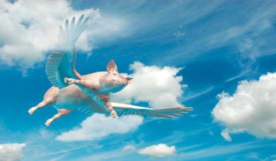 """""""猪""""通胀的影响,是不是被市场低估了?"""