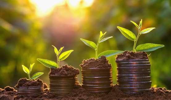 """钟正生:聚焦于""""碳中和""""目标下的财政政策经验借鉴与展望"""