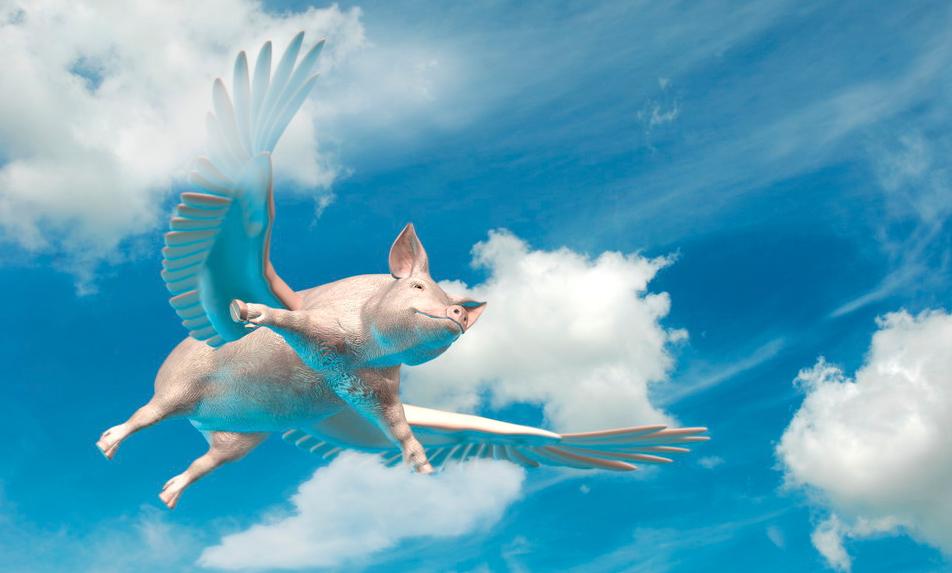 站在风口的猪肉股,终于飞不起来了?