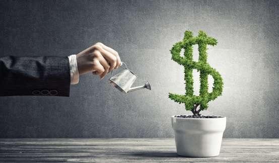这两年,美元基金都在投什么?