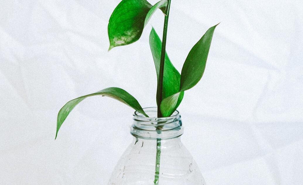 IPO探雷   改性塑料大行业中的小公司——聚赛龙