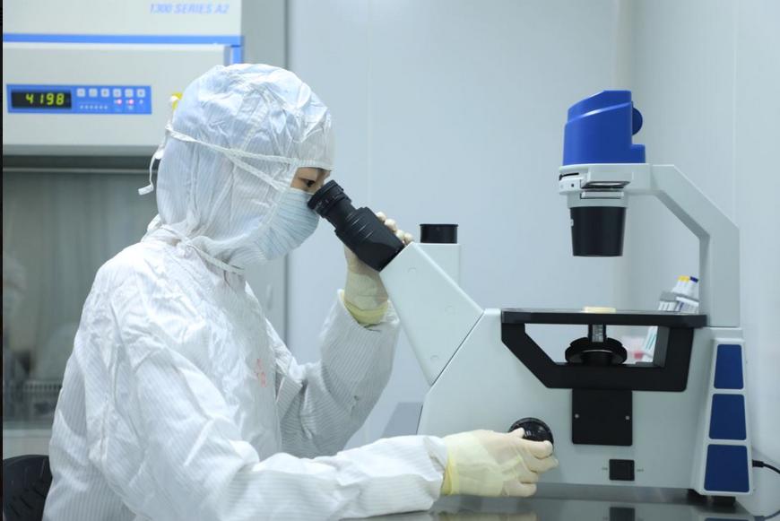 一图看懂细胞治疗第一股永泰生物-B(6978.HK)IPO