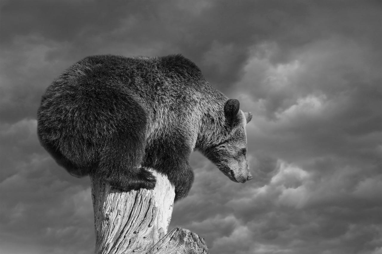 美股崩盘吓坏全球!刚刚,亚太股市延续暴跌,A股失守2700点,全球危机模式开启?