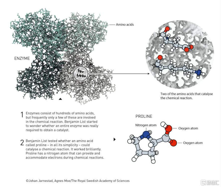 更快带来更多好药,一文读懂2021年诺贝尔化学奖插图4