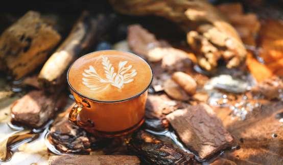 科技部刊文:过量喝咖啡会减少大脑容量并增加患痴呆症的风险