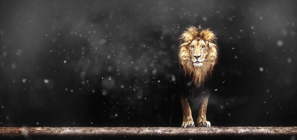 三四线不为迪士尼买单,《狮子王》能过10亿票房吗?