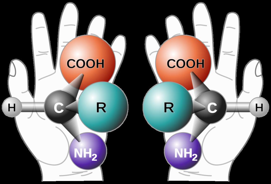 更快带来更多好药,一文读懂2021年诺贝尔化学奖插图1