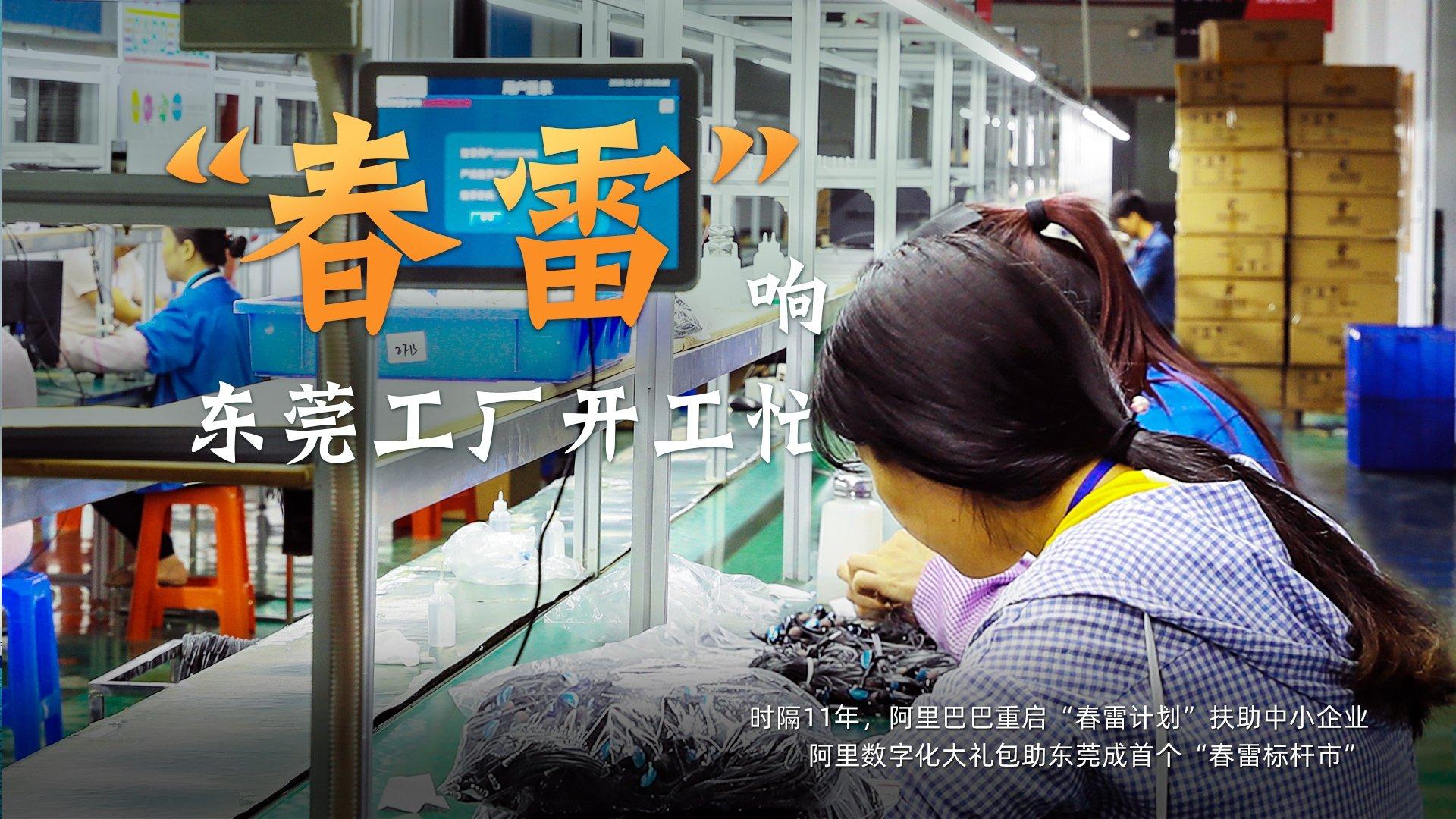 """东莞阿里牵手""""春雷计划"""",东莞外贸工厂上天猫卖2500万件夏装"""