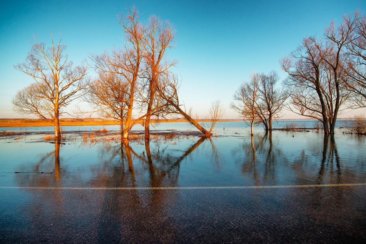 四张图,说说为何大水漫灌没有用