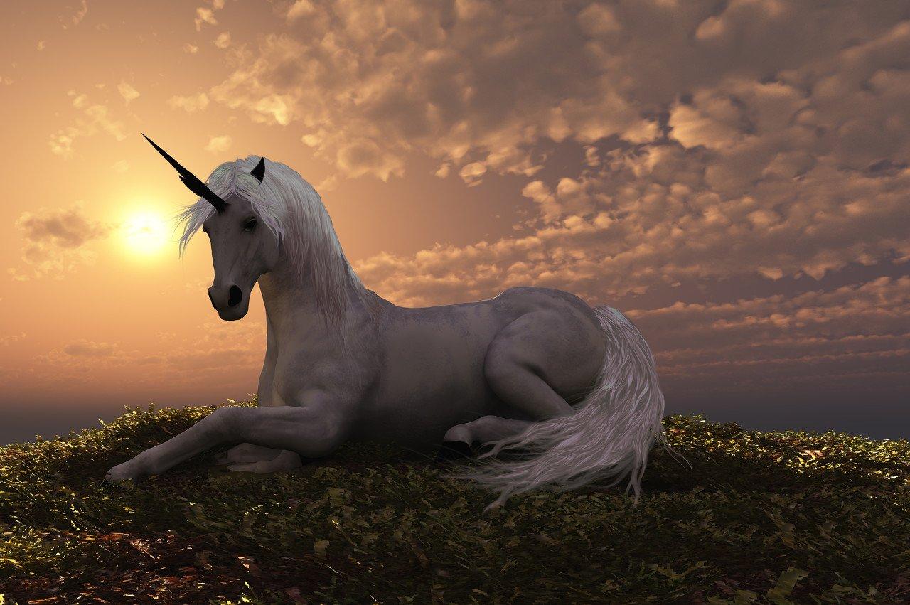 李迅雷:好赛道上跑的究竟有多少匹好马?