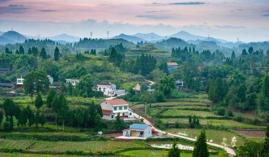 农业农村部:引导各类电子商务主体到乡村布局