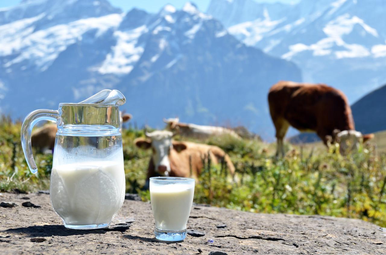 行业 | 原奶行业深度报告:原奶供需紧平衡时代来临,上下游联动加强