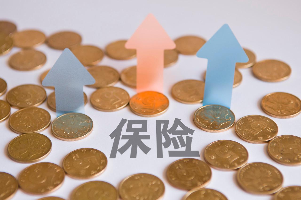 【申万宏源金融】新华保险:2019年资本市场开放日见闻与思考:拥抱变化,等待验证