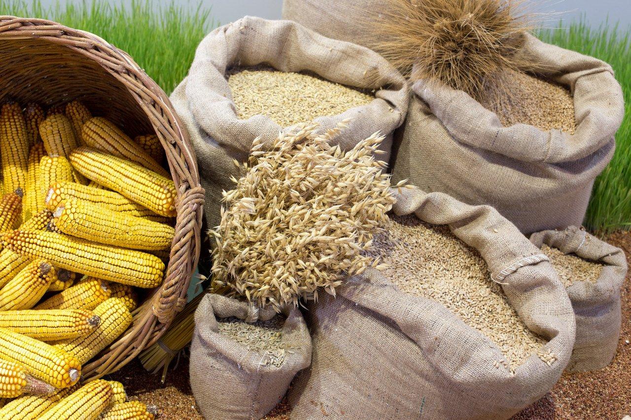 """大豆、玉米、油脂等农产品涨势此起彼伏,2021年将处于""""持久牛市""""?"""