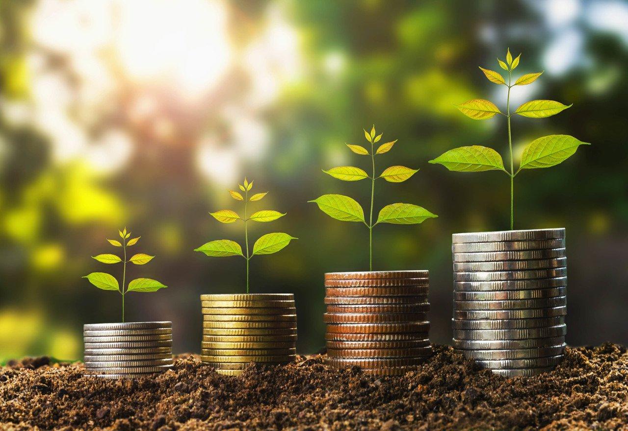 李湛:投资增速分化催生行业发展新机遇