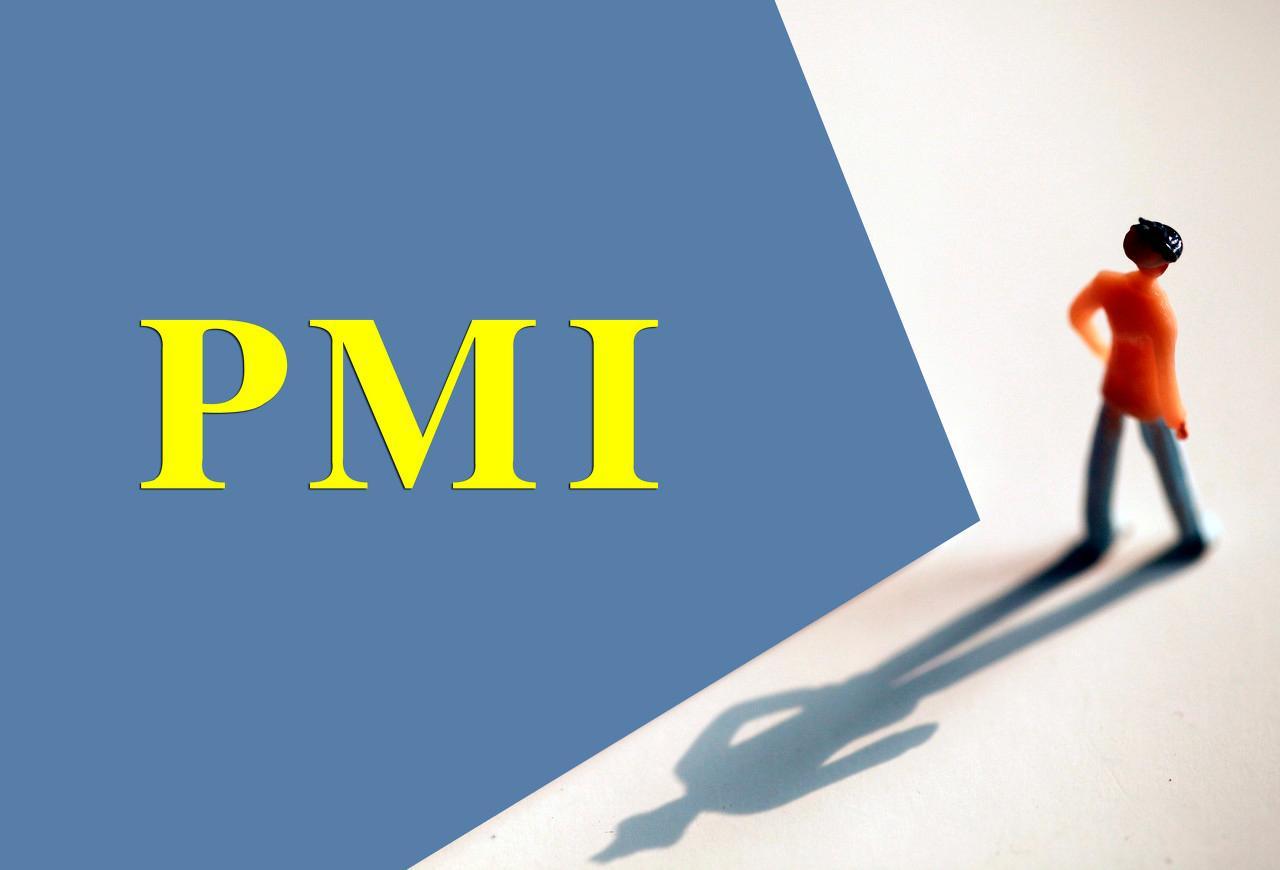PMI | 如何看懂PMI?